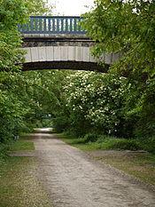 le chemin vert_02