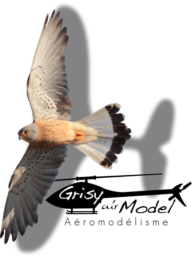 logo-web grisy air model