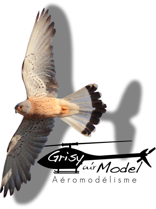 logo-web grisy air model